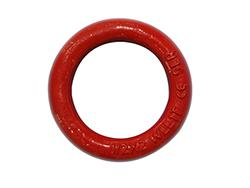 Forged Alloy Steel Lifting Ring